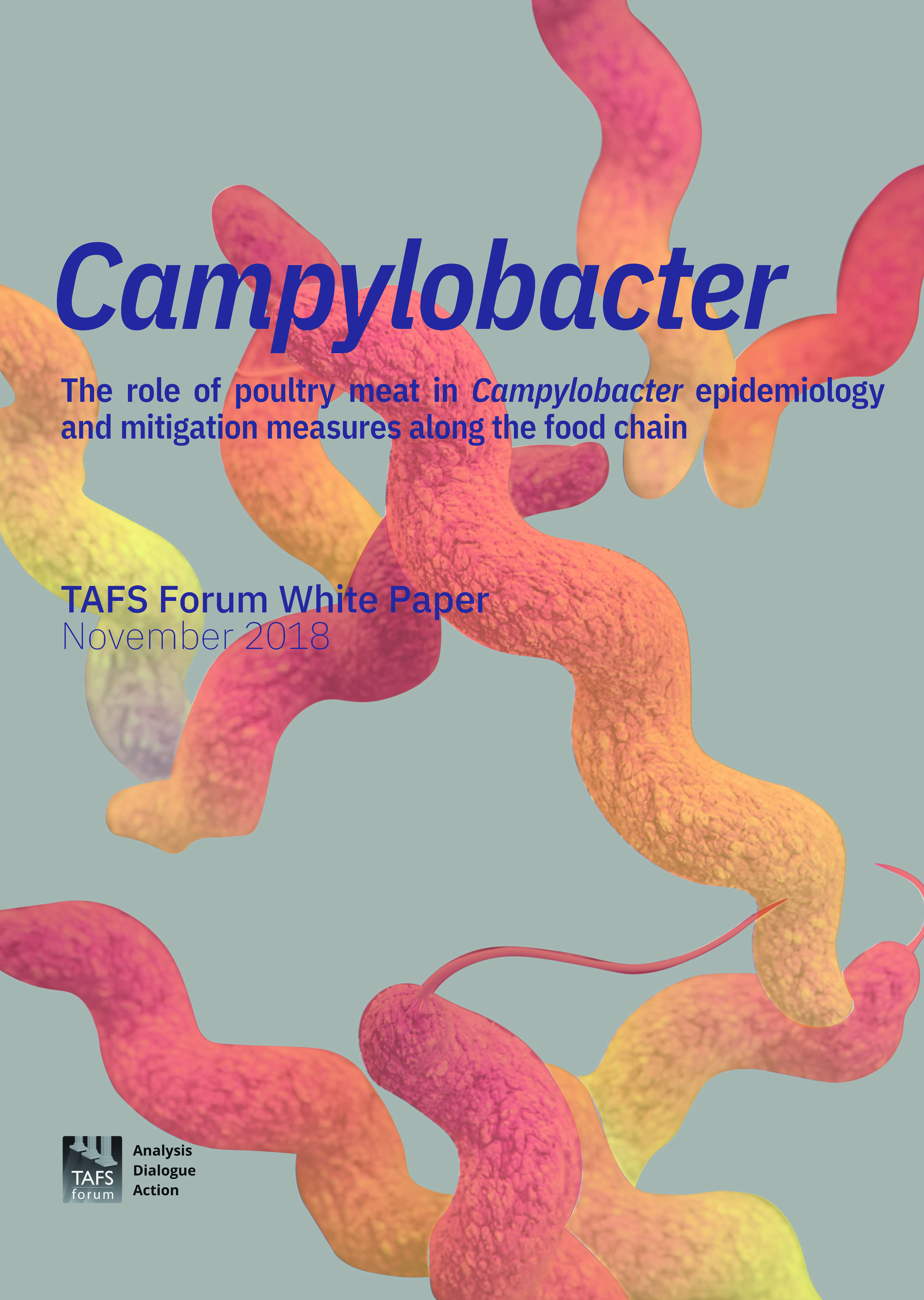 TAFS White Paper Campylobacter Cover